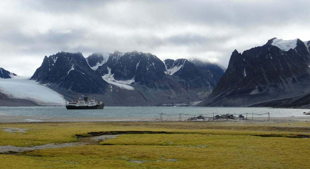 Svalbard Islands - Magdalenfjorden - tundra