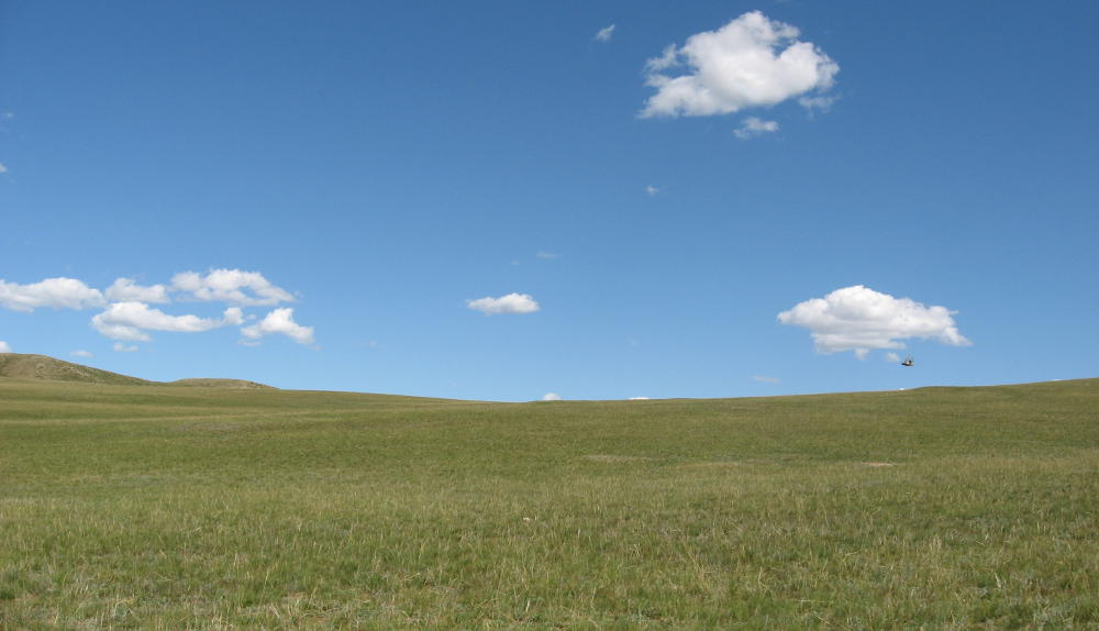 Mongolia - paesaggi steppa