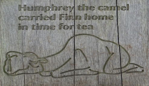 Humphrey the camel - The Giant's Causeway - Irlanda