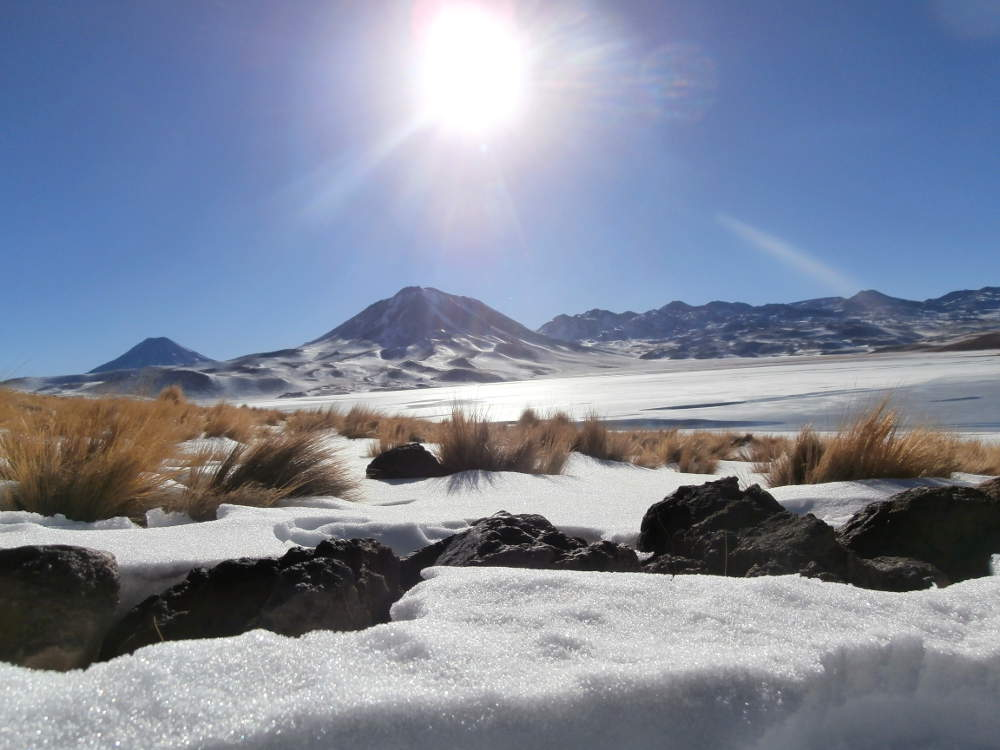 Chile - San Pedro de Atacama - Laguna Miscanti