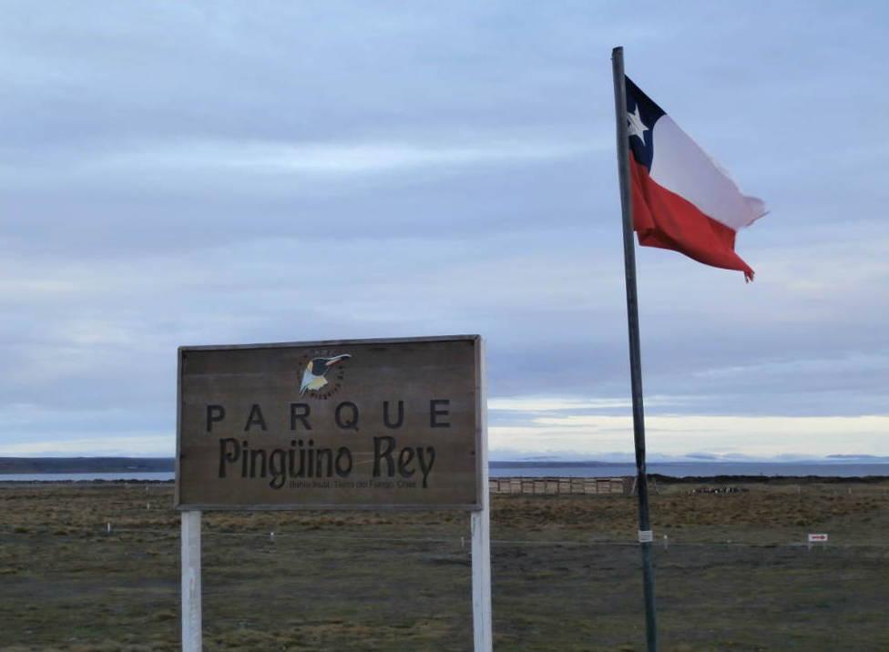 Chile - Patagonia - Parque Pinguino Rey