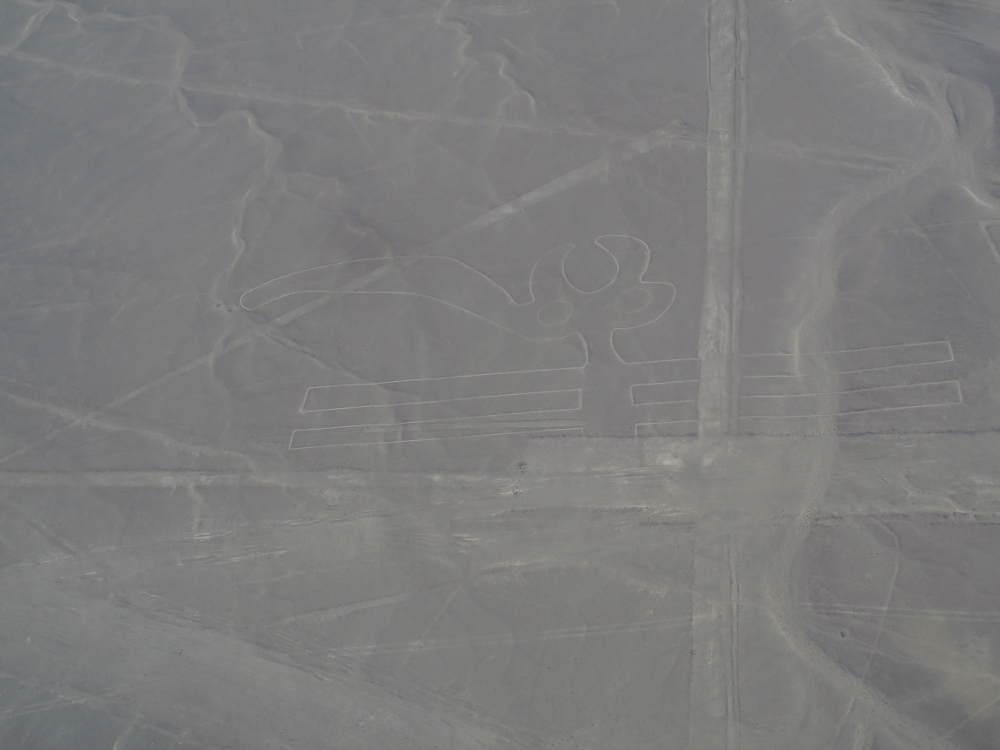 Peru - Nasca - Nazca Lines
