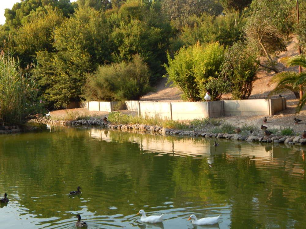 Cerdeña - Casteddu/Cagliari - Parque Monte Urpinu