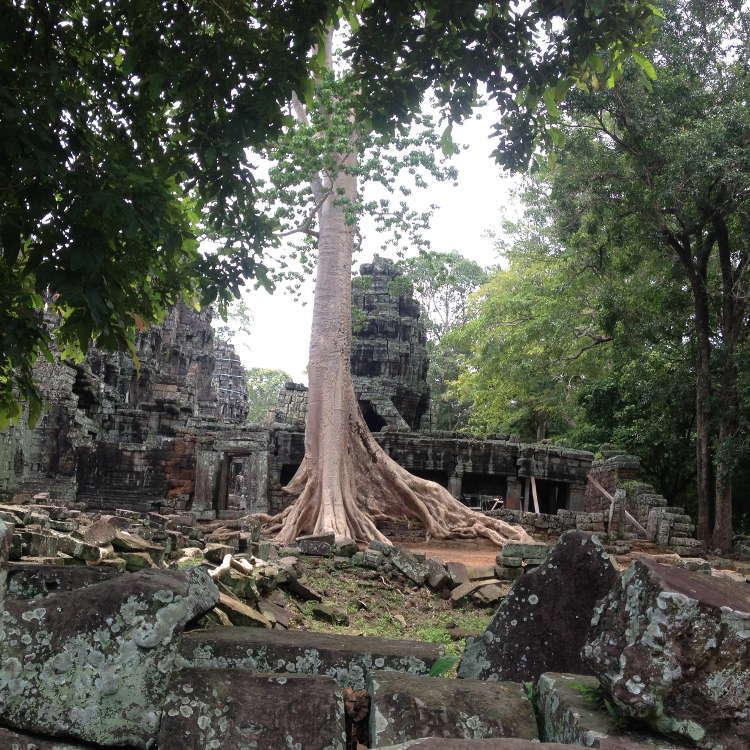 Cambodia - Angkor - Prasat Banteay Kdei