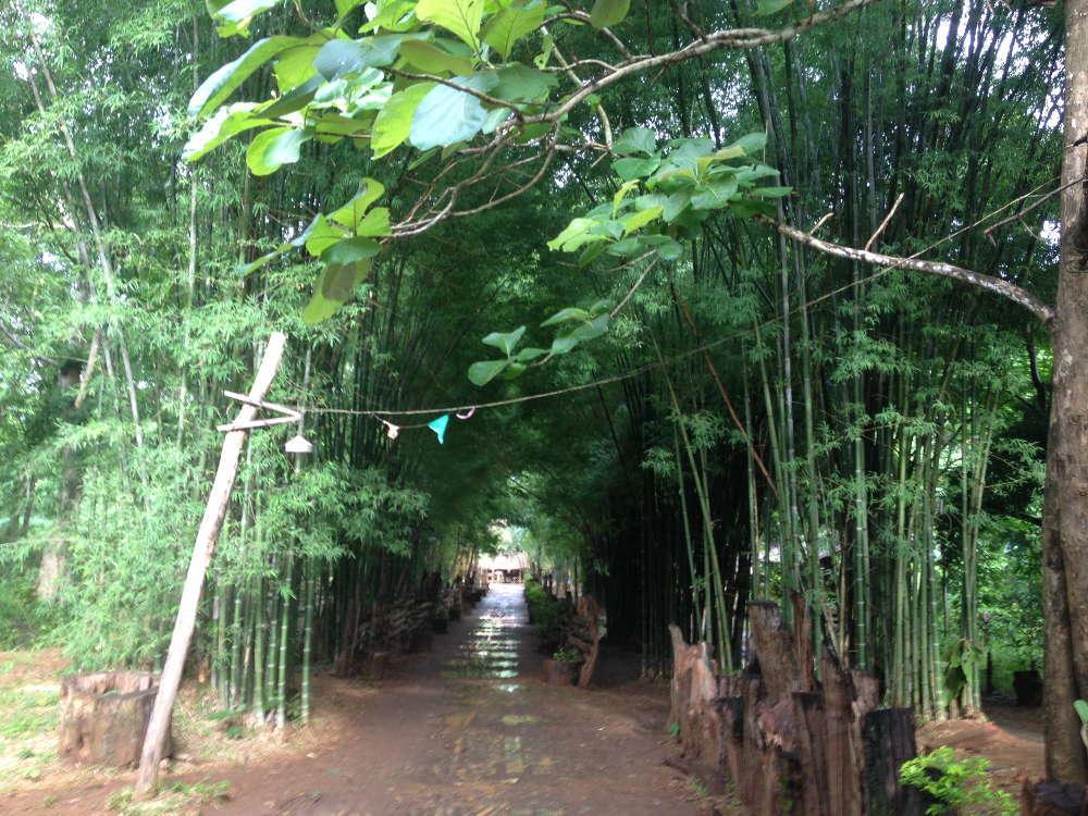 Laos - Pakse - Tad Paxuam Village