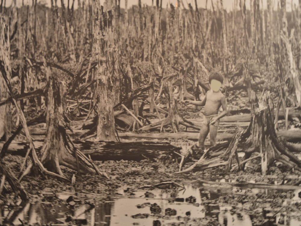 Vietnam - Ciudad Ho Chi Minh HCMC Saigon - Museo de los Restos de Guerra - foto napalm y Agent Orange