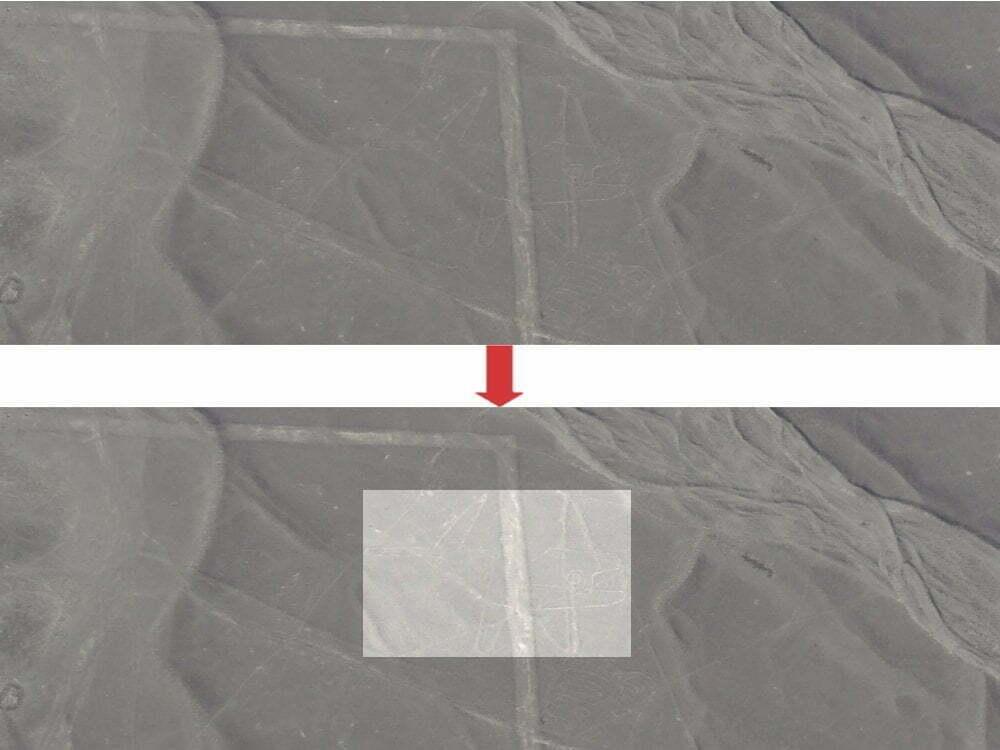 Peru - Linee di Nazca - zoom balena + immagine evidenziata