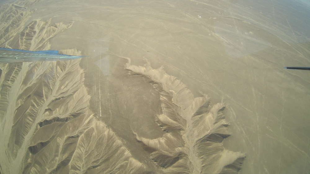 Peru - Nazca Lines - Humming Bird from the plane