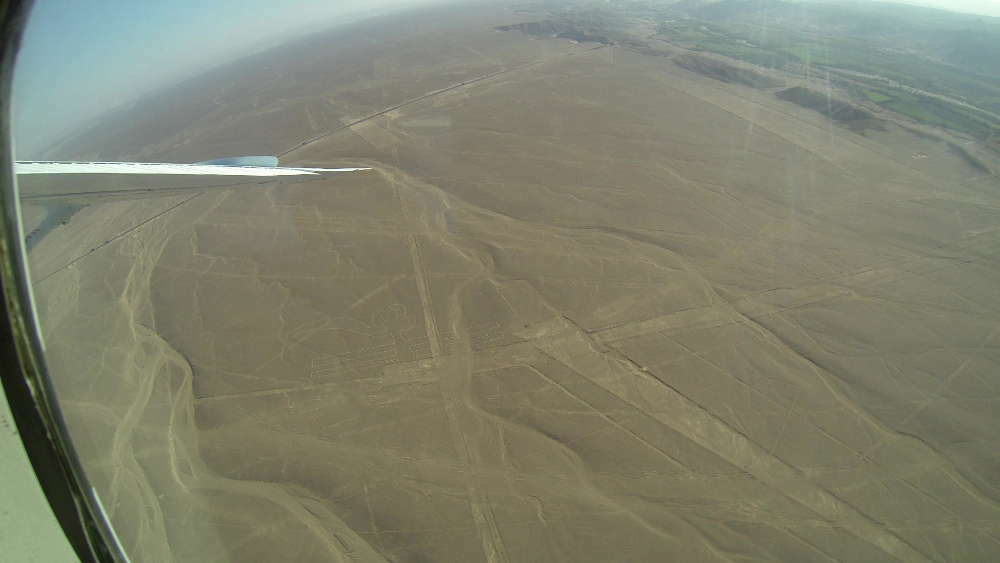 Peru - Nazca Lines - Parrot from the plane