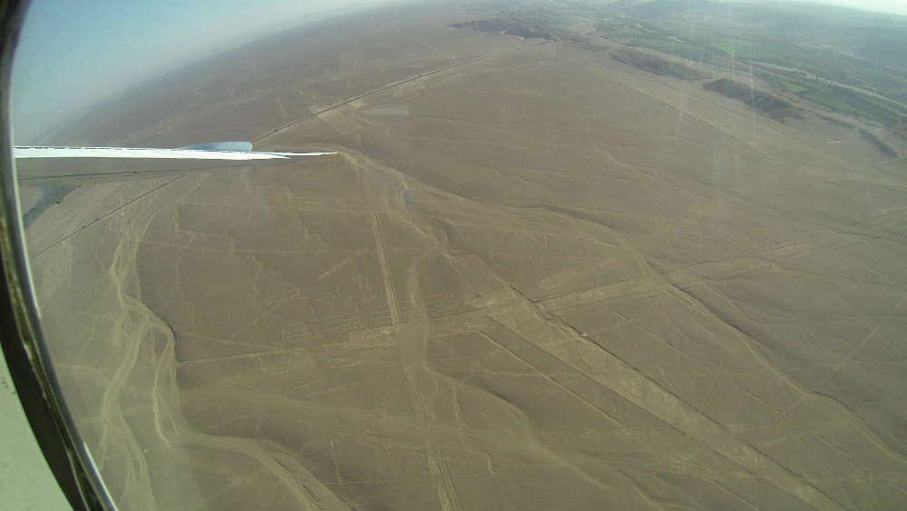 Peru - Linee di Nazca - pappagallo dall'aereo